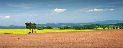 αγροτική όψη Στοκ Εικόνες