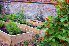 Αγροτικοί λαχανικό χώρας & κήπος λουλουδιών με τα αυξημένα κρεβάτια Στοκ εικόνα με δικαίωμα ελεύθερης χρήσης