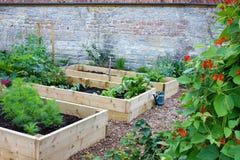 Αγροτικοί λαχανικό χώρας & κήπος λουλουδιών με τα αυξημένα κρεβάτια Στοκ Εικόνα