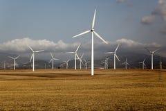 αγροτικός αέρας Στοκ Φωτογραφία