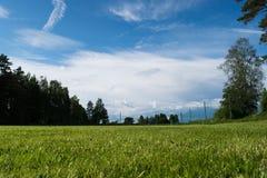 Αγροτικός αγωνιστικός χώρος ποδοσφαίρου Στοκ εικόνες με δικαίωμα ελεύθερης χρήσης