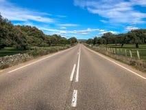 Αγροτικός δρόμος πέρα από το λιβάδι με τις βαλανιδιές ακροποταμιών και το φράκτη και το μπλε ουρανό και σύννεφα στην Ισπανία Στοκ Εικόνα
