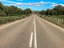 Αγροτικός δρόμος πέρα από το λιβάδι με τις βαλανιδιές ακροποταμιών και το φράκτη και το μπλε ουρανό και σύννεφα στην Ισπανία Στοκ φωτογραφίες με δικαίωμα ελεύθερης χρήσης