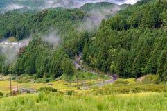 Αγροτικός θυελλώδης δρόμος μεταξύ των τομέων ρυζιού και της δασικής άποψης άνωθεν στοκ φωτογραφίες