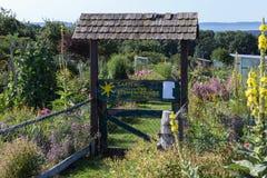 αγροτικός κήπος εξοχικών σπιτιών στην καυτή θερινή ημέρα του Ιουλίου και των επιστολών garte Στοκ Φωτογραφίες