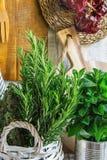 Αγροτικός ξύλινος τοίχος σανίδων κουζινών εσωτερικός άσπρος που κρεμά την τέμνουσα σειρά εργαλείων πετσετών λινού πινάκων των ξηρ Στοκ Εικόνες