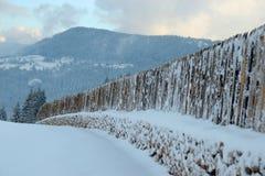 Αγροτικός ξύλινος φράκτης, χειμερινό τοπίο Στοκ Φωτογραφίες