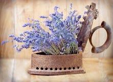 Αγροτικός σίδηρος (παλαιός σίδηρος) και ξηρό lavender Στοκ Εικόνες