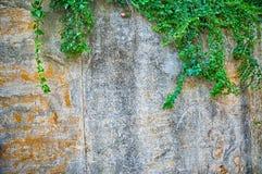 Αγροτικός τοίχος στοκ φωτογραφίες