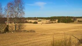 Αγροτικός τομέας Στοκ Φωτογραφία