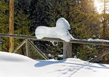 αγροτικός χειμερινός το&p Στοκ Φωτογραφίες