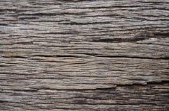 αγροτικό δάσος ανασκόπησης παλαιά σανίδα Ξύλινο υπόβαθρο Taxture Στοκ Εικόνες