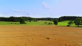 Αγροτικό βαυαρικό τοπίο σε Sommer, Βαυαρία, Γερμανία φιλμ μικρού μήκους