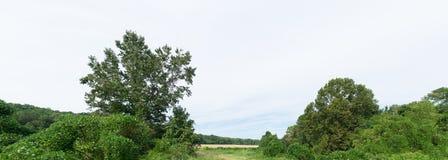 Αγροτικό γεωργικό τοπίο του βόρειου Μισισιπή Στοκ φωτογραφία με δικαίωμα ελεύθερης χρήσης