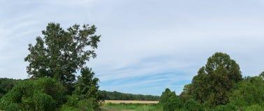 Αγροτικό γεωργικό τοπίο του βόρειου Μισισιπή Στοκ Φωτογραφία