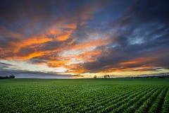 αγροτικό ηλιοβασίλεμα στοκ εικόνα με δικαίωμα ελεύθερης χρήσης
