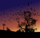 αγροτικό ηλιοβασίλεμα διανυσματική απεικόνιση