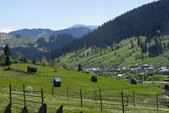Αγροτικό Καρπάθιο τοπίο Ρουμανία Στοκ εικόνα με δικαίωμα ελεύθερης χρήσης