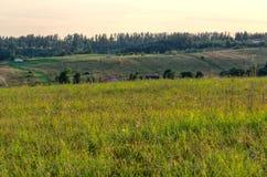 αγροτικό καλοκαίρι τοπίων Στοκ Εικόνες