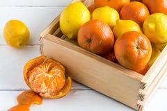 Αγροτικό κλουβί με ολόκληρες τα λεμόνια και τις κλημεντίνες φρούτων στοκ εικόνες με δικαίωμα ελεύθερης χρήσης