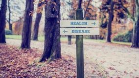 Αγροτικό ξύλινο σημάδι σε ένα πάρκο φθινοπώρου με την υγεία λέξεων - DIS Στοκ Εικόνες