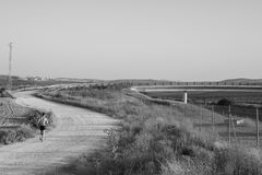 Αγροτικό οδικό τοπίο με μια κατάρτιση corresor στοκ εικόνα με δικαίωμα ελεύθερης χρήσης