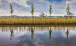 Αγροτικό ολλανδικό τοπίο Στοκ φωτογραφία με δικαίωμα ελεύθερης χρήσης