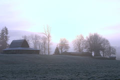αγροτικό παγωμένο πρωί Στοκ Εικόνες