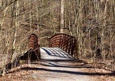 Αγροτικό παλαιό μέταλλο και ξύλινη γέφυρα πέρα από έναν κολπίσκο σε ένα δάσος Στοκ Φωτογραφία