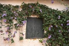 Αγροτικό παράθυρο με το λουλούδι γύρω από το σε Barichara Κολομβία Στοκ εικόνες με δικαίωμα ελεύθερης χρήσης