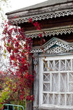Αγροτικό παράθυρο σπιτιών που τυλίγεται με το αναρριχητικό φυτό της Βιρτζίνια φθινοπώρου (Partheno Στοκ Εικόνα