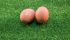 Αγροτικό πρόγευμα τροφίμων αυγών φωλιών Στοκ Εικόνες