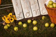 Αγροτικό σημάδι αγάπης με τα μήλα Στοκ Φωτογραφία