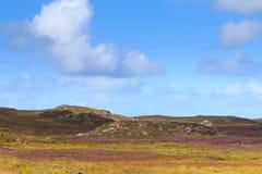 Αγροτικό σκωτσέζικο πανόραμα Στοκ Εικόνες