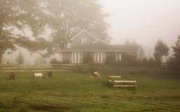 αγροτικό σπίτι αγροτικό Στοκ Φωτογραφίες