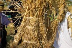 Αγροτικό ταϊλανδικό σκιάχτρο αγροτών Στοκ φωτογραφίες με δικαίωμα ελεύθερης χρήσης