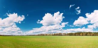 Αγροτικό τομέας επαρχίας ή τοπίο λιβαδιών με την πράσινη χλόη επάνω Στοκ φωτογραφίες με δικαίωμα ελεύθερης χρήσης