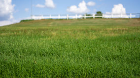 αγροτικό τοπίο αγροτικό Στοκ Εικόνες