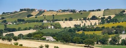 Αγροτικό τοπίο κοντά σε Recanati Ιταλία στοκ φωτογραφίες