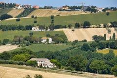 Αγροτικό τοπίο κοντά σε Recanati Ιταλία στοκ φωτογραφία με δικαίωμα ελεύθερης χρήσης