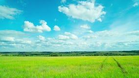 Αγροτικό τοπίο με έναν τομέα και ένα ηλεκτροφόρο καλώδιο, πανοραμικό χρόνος-σφάλμα φιλμ μικρού μήκους