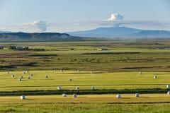 Αγροτικό τοπίο με καπνισμένο Eyjafjallajokull, Ισλανδία Στοκ Φωτογραφία