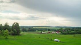 Αγροτικό τοπίο με τα σύννεφα βροχής και τα πρόβατα κατά τη βοσκή, χρόνος-σφάλμα φιλμ μικρού μήκους
