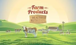 Αγροτικό τοπίο με τις αγελάδες και το αγρόκτημα Στοκ εικόνα με δικαίωμα ελεύθερης χρήσης