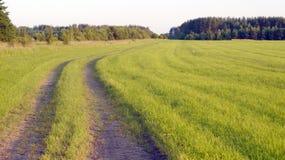 Αγροτικό τοπίο με τον τομέα Στοκ Εικόνες