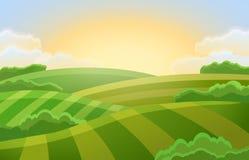 Αγροτικό τοπίο με τους πράσινους τομείς διανυσματική απεικόνιση