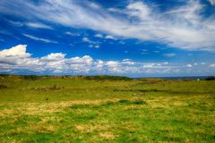 Αγροτικό τοπίο με το κοπάδι αγελάδων Στοκ φωτογραφία με δικαίωμα ελεύθερης χρήσης