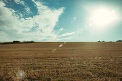 Αγροτικό τοπίο στο ηλιοβασίλεμα και τομέας που καλύπτεται από το άχυρ στοκ φωτογραφίες