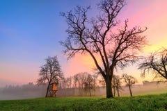 Αγροτικό τοπίο στο ηλιοβασίλεμα, με τα όμορφα διαφορετικά χρώματα στον ουρανό στοκ φωτογραφία