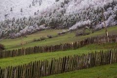 Αγροτικό αγροτικό τοπίο στο svanetia στοκ φωτογραφία